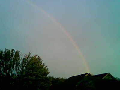 rainbow-right